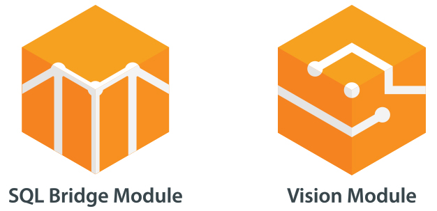 SQL Bridge and Vision Modules